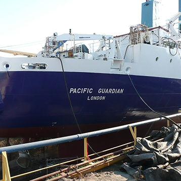 Pacific Guardian
